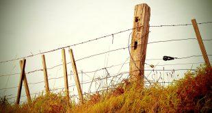 المؤسسات الإجتماعية: السجن نموذجا