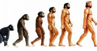 الأركيولوجيا / البيولوجيا : من كوفيه إلى داروين (الجزء الأول)