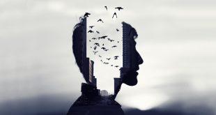 العلوم الإنسانية وأزمة المنهج: حدود التفسير وحدود الفهم